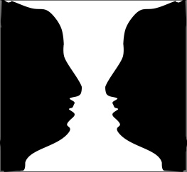 profile or vase